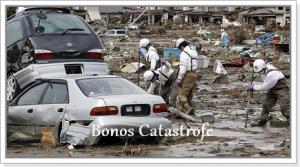 bonos_catastrofe